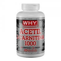 ACETIL L-CARNITINA 1000 90 CPR