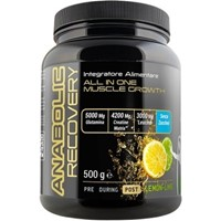 ANABOLIC RECOVERY (500G)